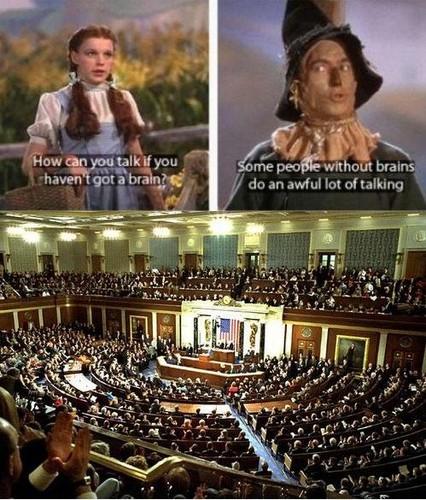 Politicians In General
