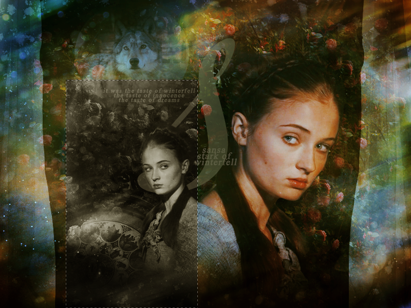 stark images sansa - photo #35
