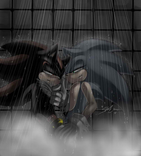 Sonadow Shower