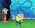 Spongebob & Squidward - spongebob-squarepants wallpaper