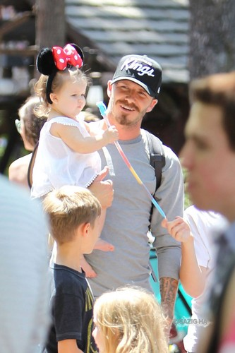 The Beckhams at Disneyland with family
