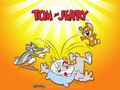 Tom, Jerry, and Spike - tom-and-jerry photo