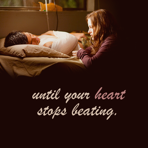 Twilight quotes 1-20