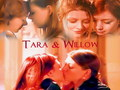 Willow & Tara  - willow-and-tara wallpaper