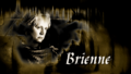 Brienne of Tarth - game-of-thrones wallpaper