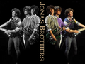 jonas - the-jonas-brothers wallpaper
