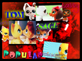 lps popular its not over yet