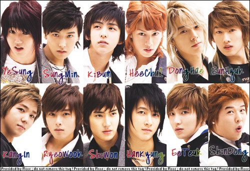Super Junior Обои with a bearskin called super junior