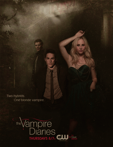 The Vampire Diaries wallpaper possibly with a sign, a concert, and a dinner dress titled the vampire diaries Two hybrids One blonde Vampire
