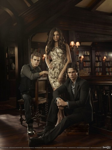 The Vampire Diaries پیپر وال with a drawing room, a family room, and a living room titled the vampire diaries poster damon elena stefan