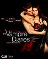 _the vampire diaries season_4_promo_poster_stelena