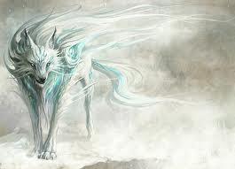 winter serigala, wolf