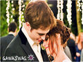 twilight-series -  Edward &amp; Bella   wallpaper