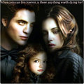 ★ Forever ☆ - twilight-series photo