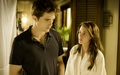 """I was perfectly happy"" - breaking-dawn-the-movie wallpaper"