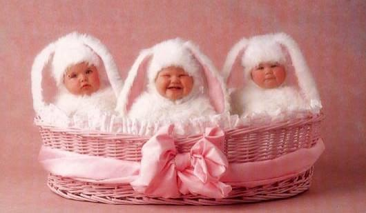 91 best Anne Geddes cuties images on Pinterest | Spotlight, Angel ...