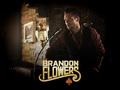 Brandon Flowers website update