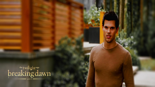 Twilight Series wallpaper with a hunk called Breaking Dawn Part 2 wallpapers