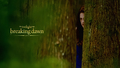 twilight-series - Breaking Dawn Part 2 wallpapers wallpaper
