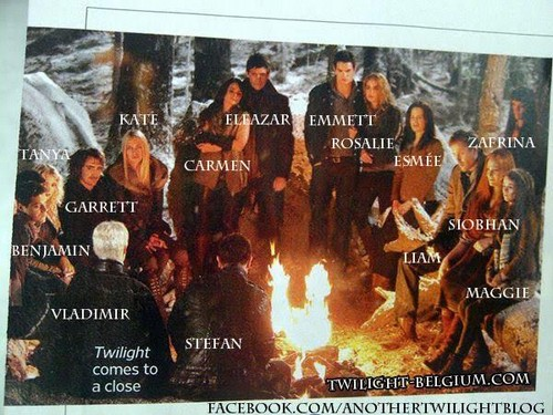 Breaking Dawn part 2 labled campfire still