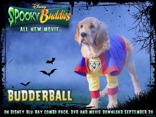 Budder Ball