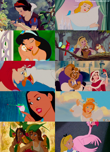 Disney Princesses: Birds