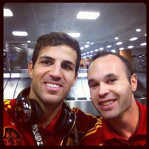 Cesc Fabregas 바탕화면 titled Euro 2012 final: Spain v Italy - Fabregas celebrating victory
