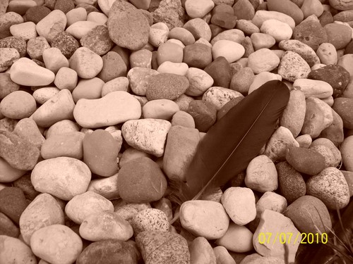 Feather and stones - photography Photo