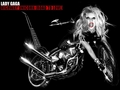 HIGHWAY UNICORN-BORN THIS WAY - lady-gaga wallpaper