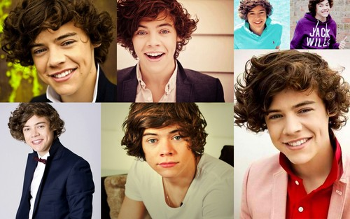 Harry Styles wolpeyper containing a portrait called Harry Styles Collage