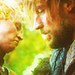 Jaime & Brienne - jaime-and-brienne icon
