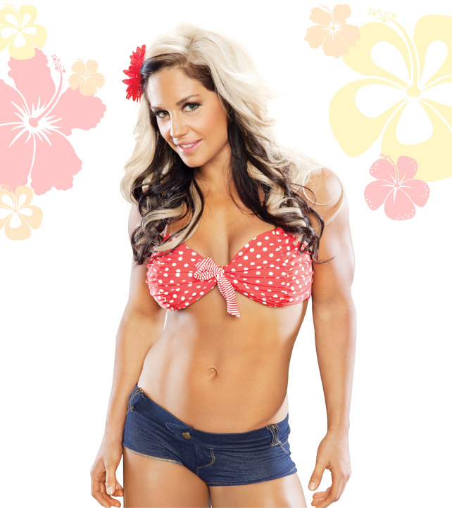 WWE Diva Kaitlyn Hot