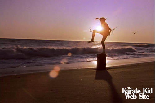 The Karate Kid wallpaper possibly with a sunset, a seaside, and a beach entitled Karate Kid.