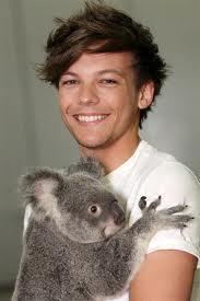 Louis Tomlinson images Louis Tomlinson wallpaper and background photos