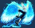 Marco the phoenix