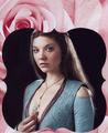 Margaery Tyrell - natalie-dormer fan art