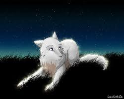 Me as a lobo
