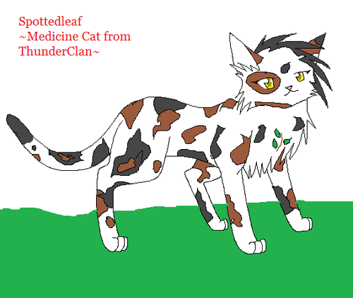 My version of Spottedleaf - WARRIOR CATS Photo (31356819) - Fanpop