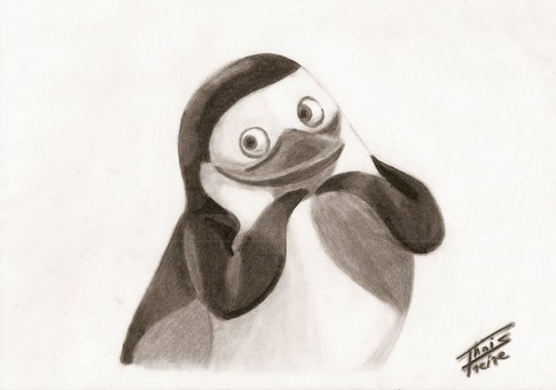 PrivateBlack/White - private-the-penguin Fan Art