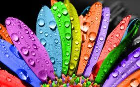arcobaleno Water fiore