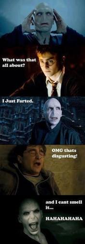 ランダム Funny Images!