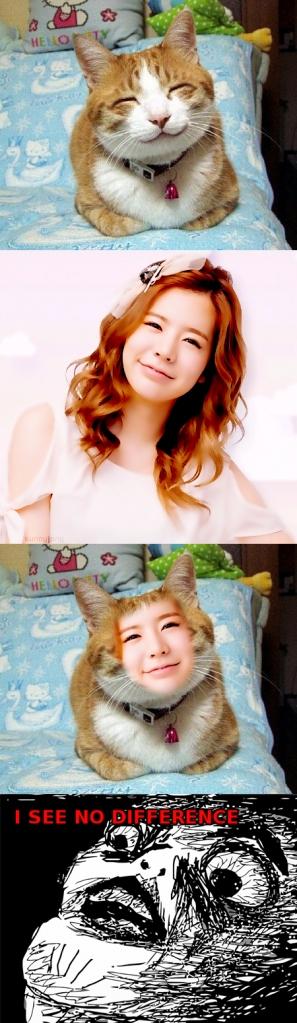 SNSD SUNNY+CAT???
