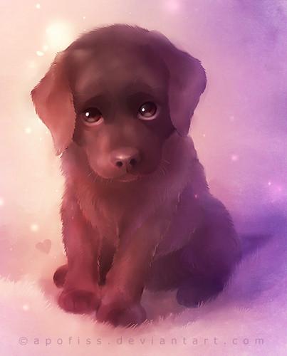 Sad 小狗