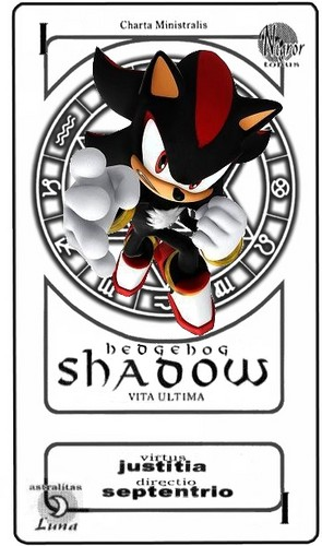 Shadow Hedgehog Pactio Card