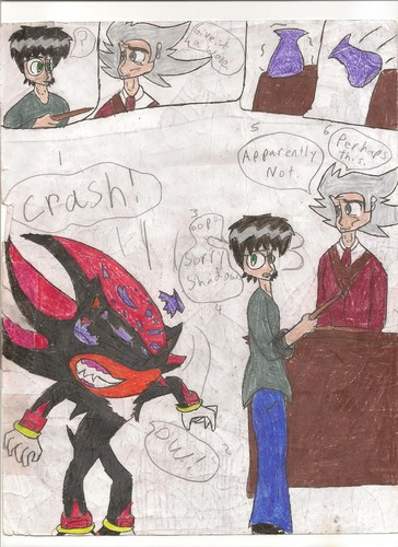 Shadow The Hedgehog and Harry Potter