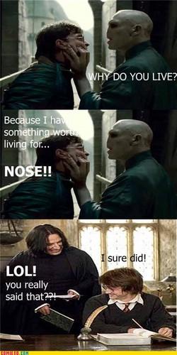 Snape Fun!