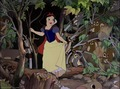 Snow White and the Seven Dwarfs Screencaps - snow-white-and-the-seven-dwarfs photo