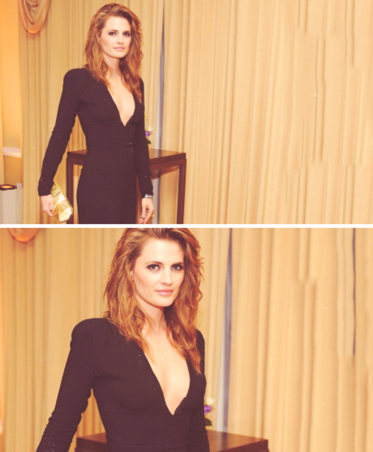Stana Katic - Beverly Hills Hotel 100th Anniversary Weekend