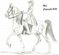 Tennasse Walker Stallion - drawing photo