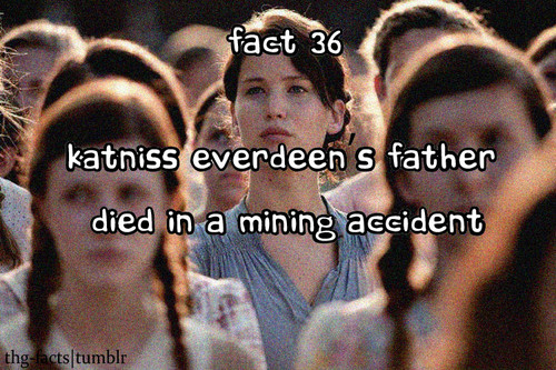 The Hunger Games achtergrond titled The Hunger Games facts 21-40